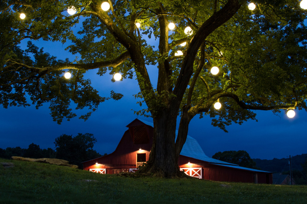 Permanent Festival Lighting Adds Ambiance And Enlivens Evenings Outdoors!
