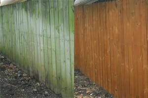Pressure Wash Fences