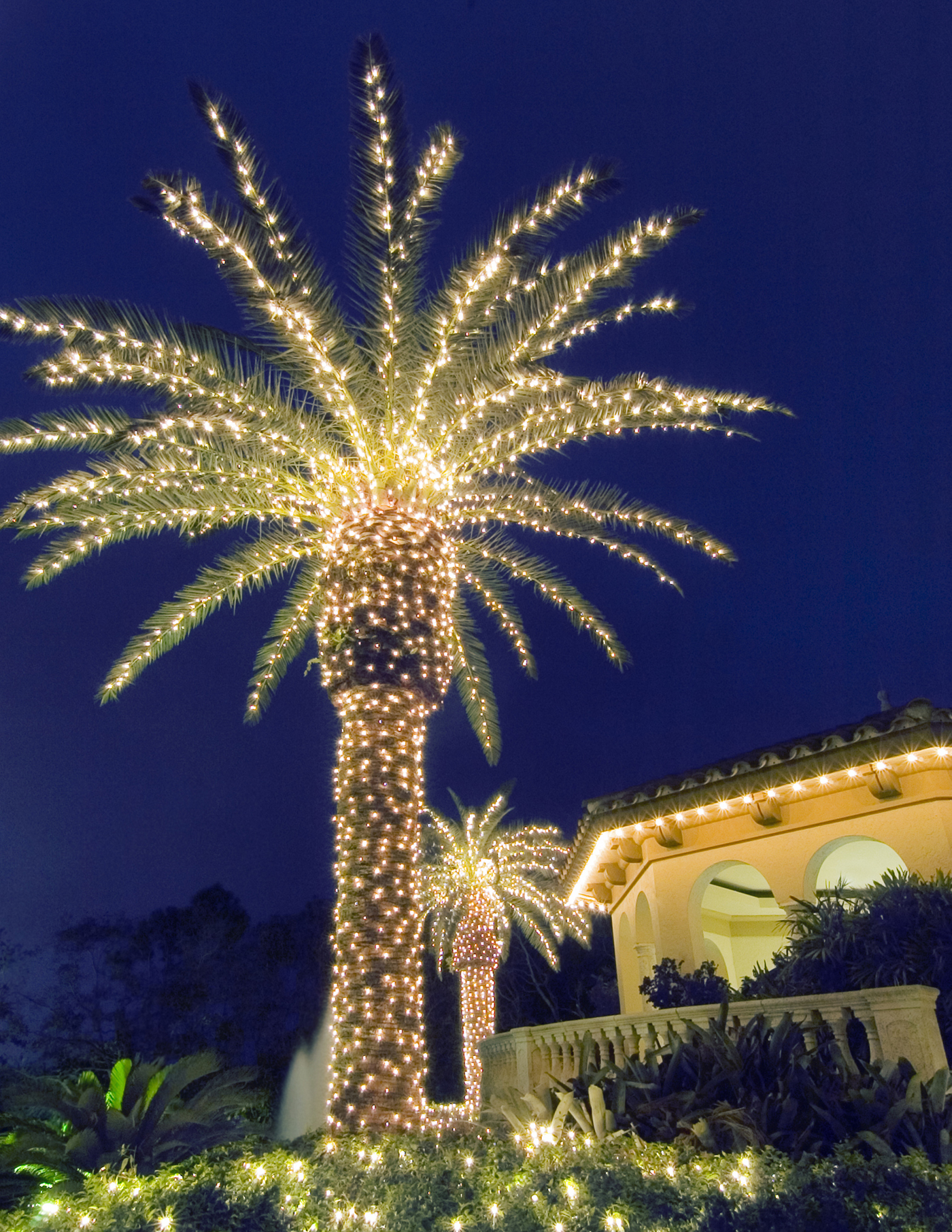 Commercial christmas decorations outdoor - Now Is The Time To Schedule Your Professional Outdoor Christmas Decorations Installation We Install Residential And Commercial Lights Alike
