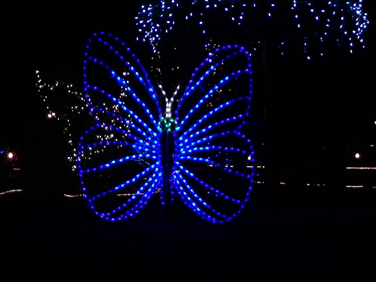 Custom butterfly sculpture created for the Butterfly Pavilion - Broomfield, CO