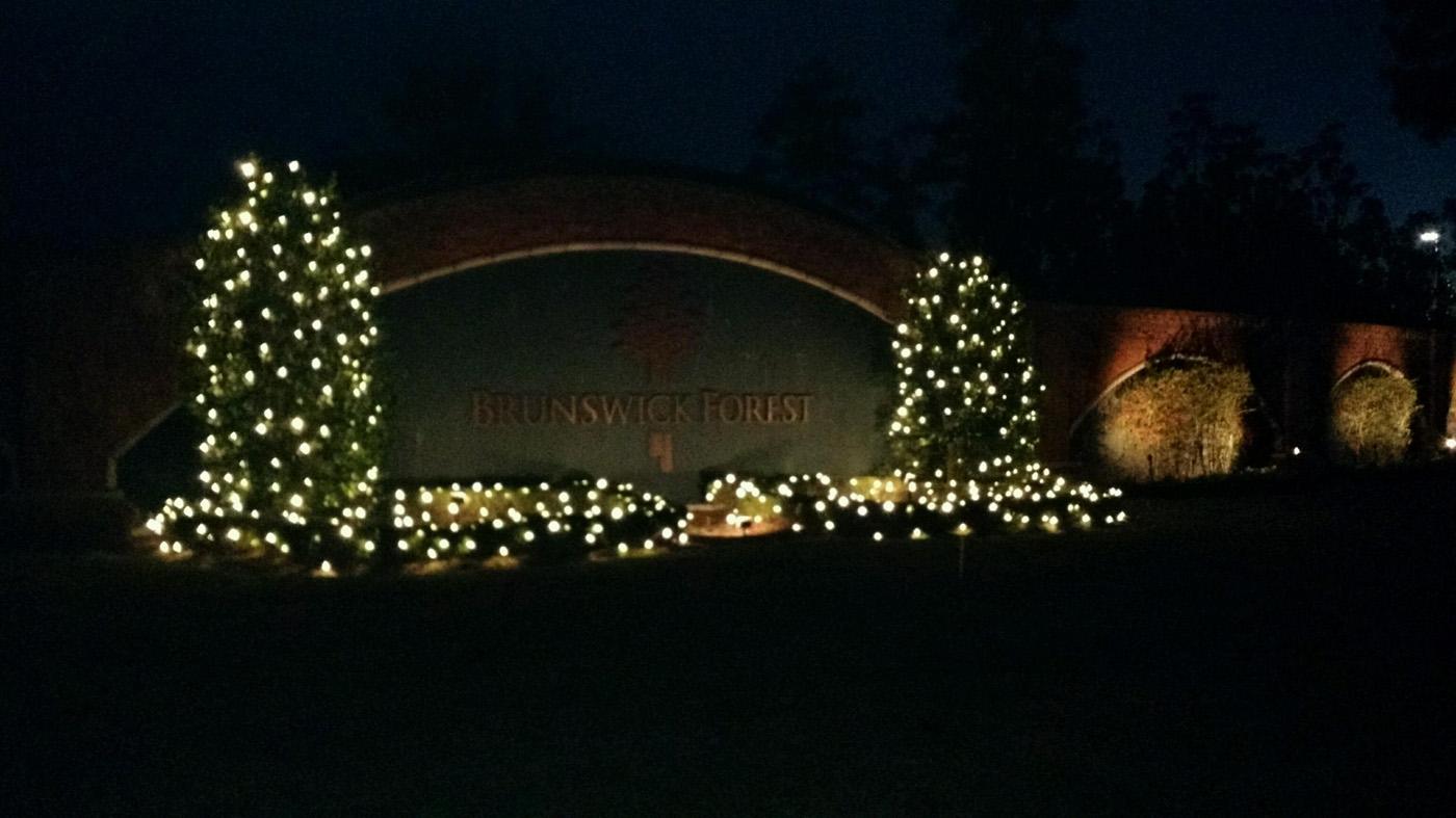 Holly Tree Christmas Lighting Brunswick