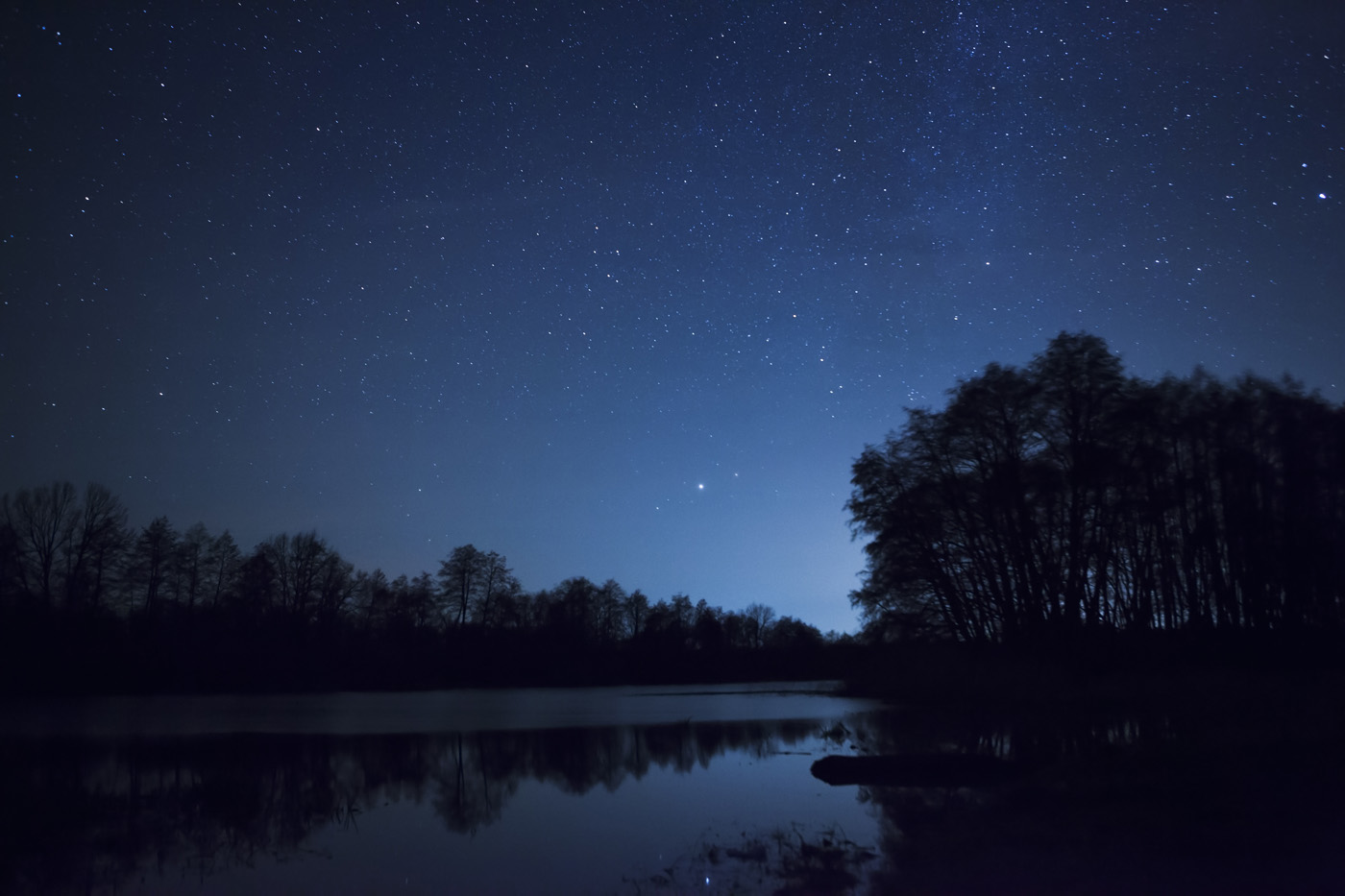 Landscape Lights Too Dim : Shadow test if your light creates a it might be too bright