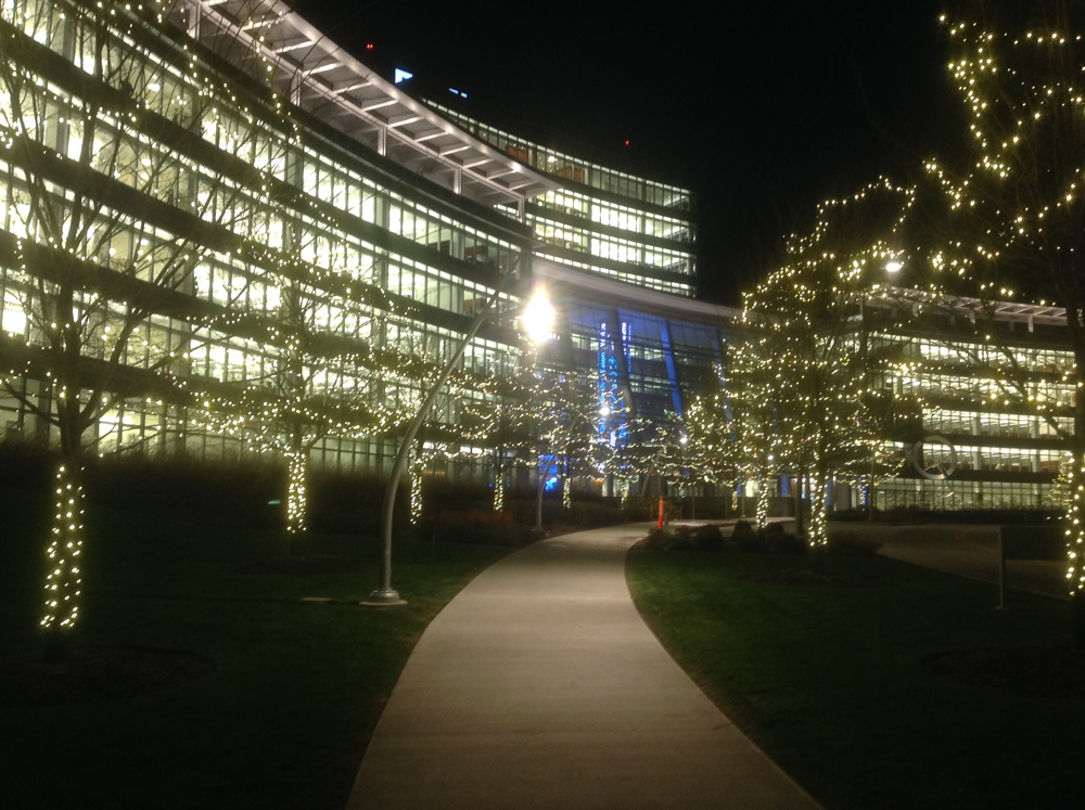Commercial tree lighting Northern Ohio. Does your business have a tree-lined path? Commercial tree lighting not only makes the path to your door more beautiful but it makes it safer too.