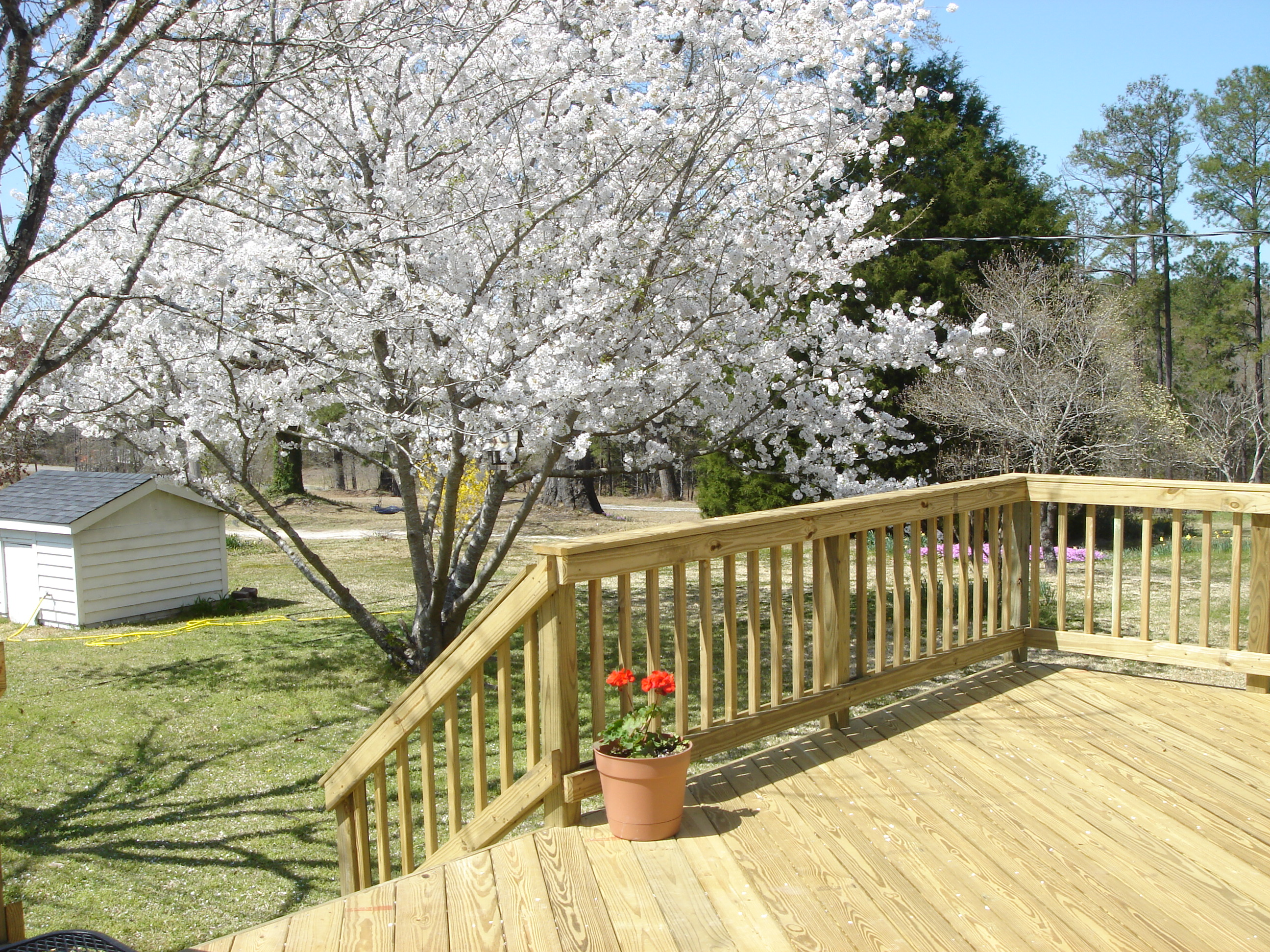 Macon and warner robins pressure treated and ipe hardwood for Cost of composite decking vs pressure treated