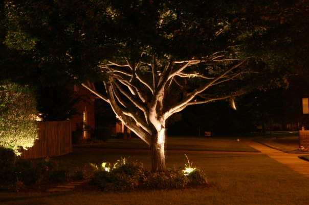 Outdoor Lights Trees: To find out how Outdoor Lighting Perspectives of Memphis can bring your  landscape to life at night, call us today at (901) 854-7111, ...,Lighting