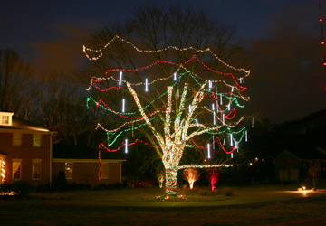 Snowfall Lighting: Snowfall Lighting Is The Latest Trend For Trees Of All  Sizes. Our LED Snowfall Lights Create The Look With Patterns Dimming On And  Off ... Home Design Ideas