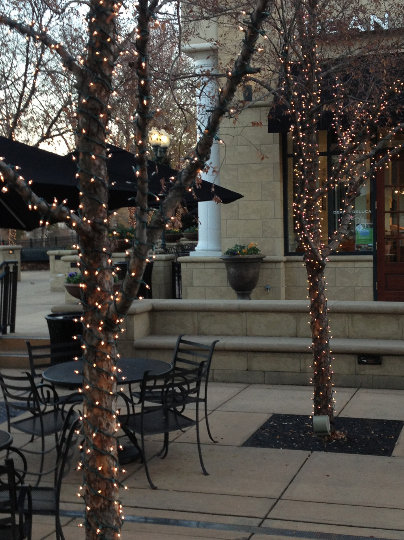 Outdoor lighting company lightscapes southern outdoor lighting - With White Led String Lights And The Proper Application We Can Turn Your Dining Patio Into A Cheery Upscale Space That Makes Every Guest Feel Like Today Is