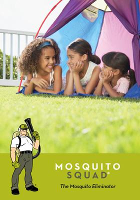 mosquito control Cumming