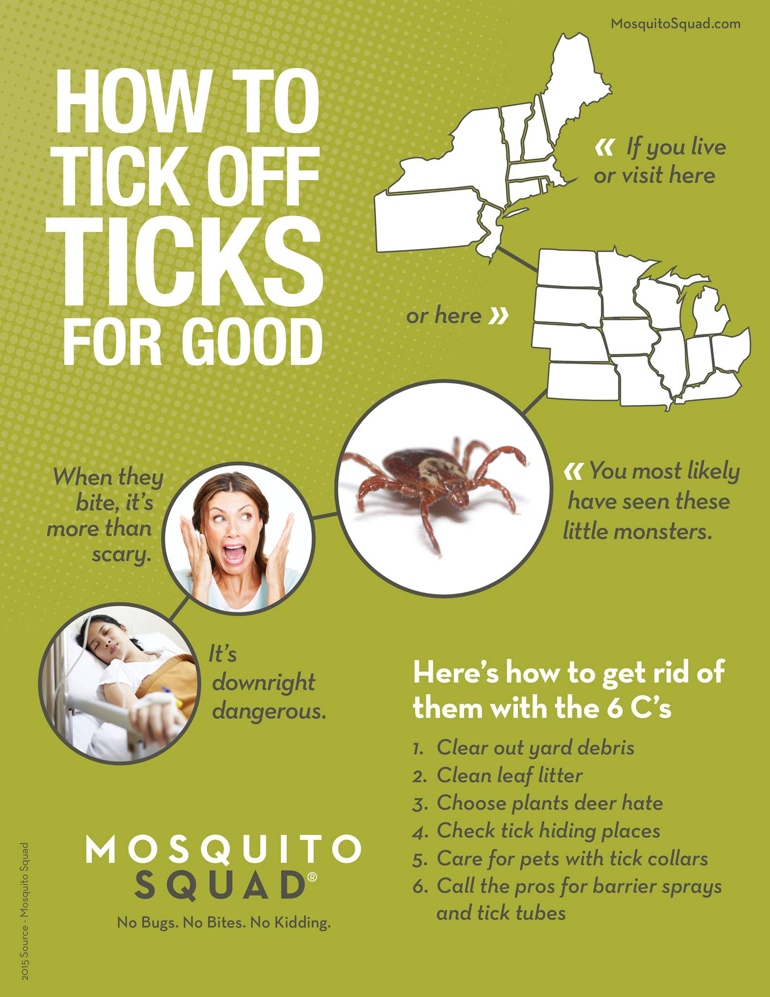 backyard tick treatment