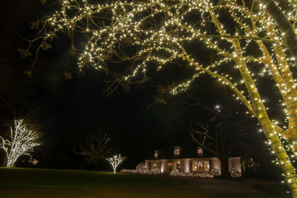 Expert christmas lighting design professional installation in holiday outdoor tree lighting mozeypictures Gallery