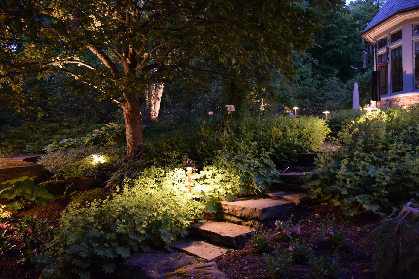 Landscape Lighting Ideas Trees : Issaquah landscape lighting outdoor perspectives