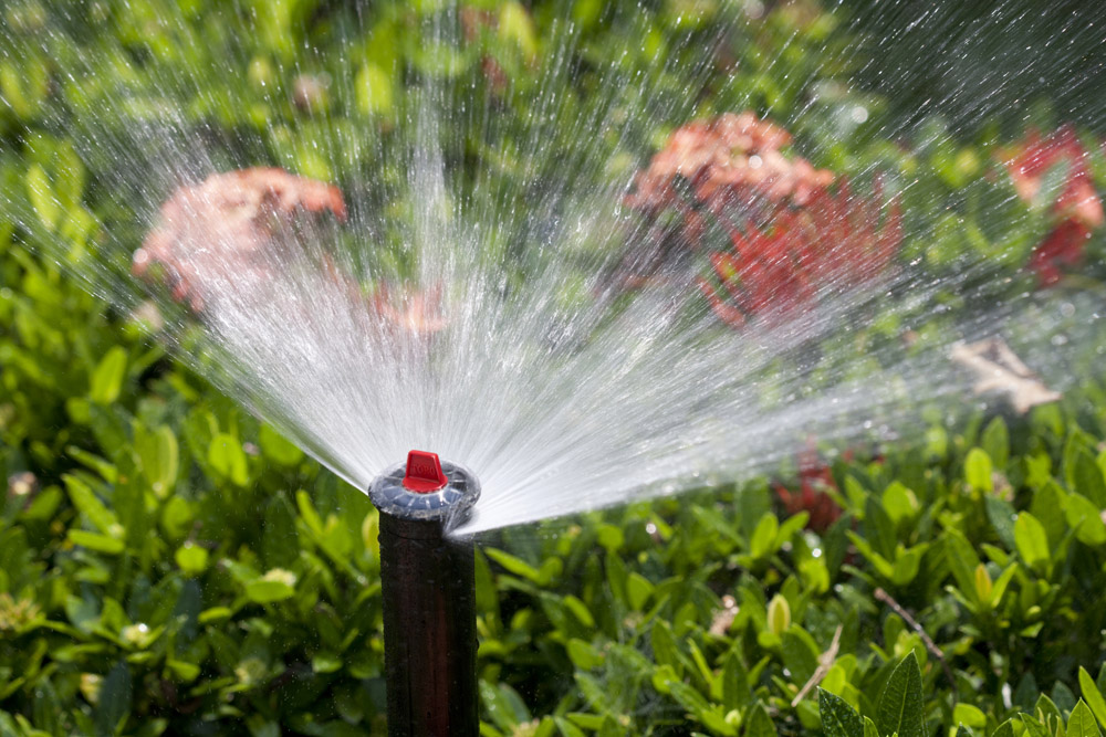 your lawn and garden will stay lush and green while you are away with conserva irrigation of north atlanta well design a smart sprinkler system you - Garden Sprinkler Design