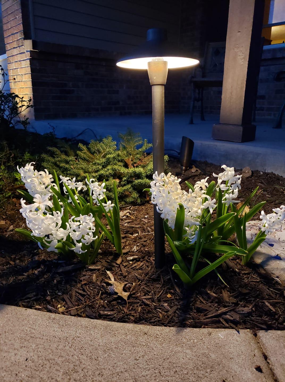 Spring Landscape lighting
