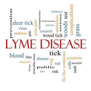 Lyme Disease in Wilmington NC