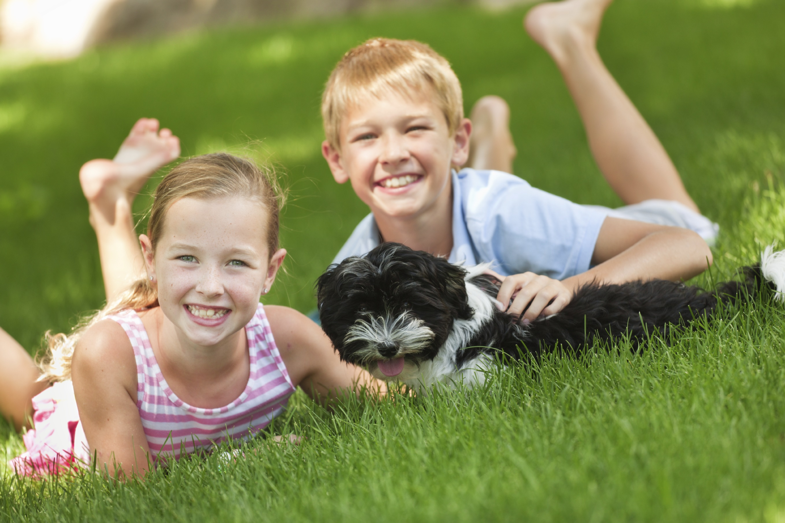 2 children playing in grass with dog