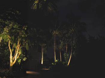 Fort Myers Outdoor Lighting Ideas