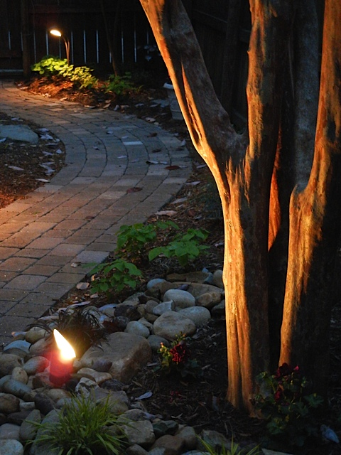 Charlotte landscape lighting anywhere people walk in your yard after dark landscape lighting will increase safety think of those steps to your front door back door porch mozeypictures Image collections