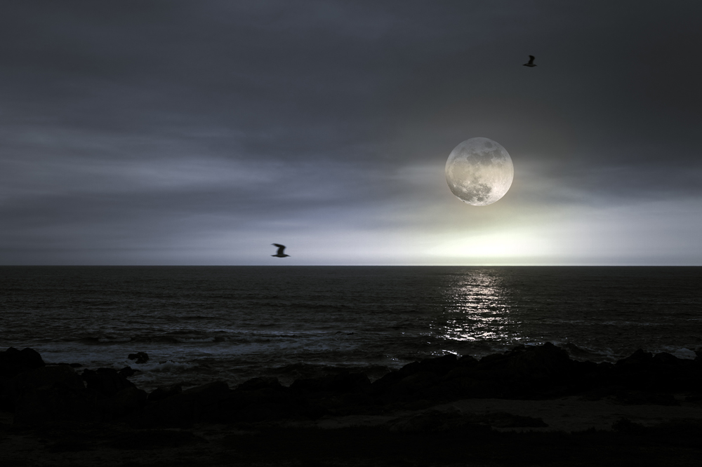 full_moons_attract_mosquitoes