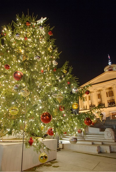 Led Lights Give Capitol Tree Cooler >> Blog Outdoor Lighting Perspectives