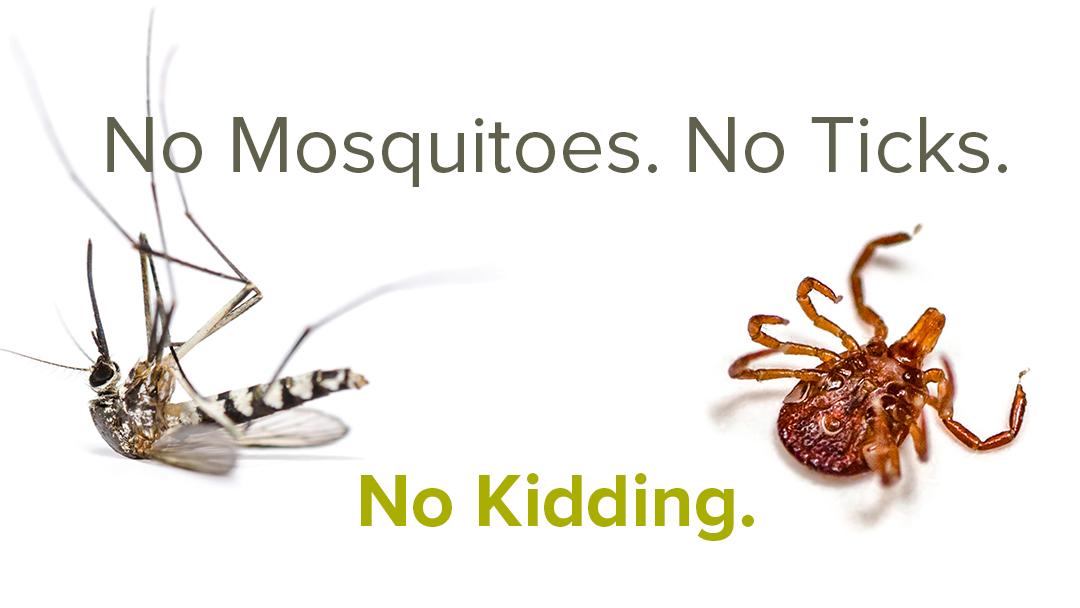 Mosquito And Tick Control For Greensboro Winston Salem