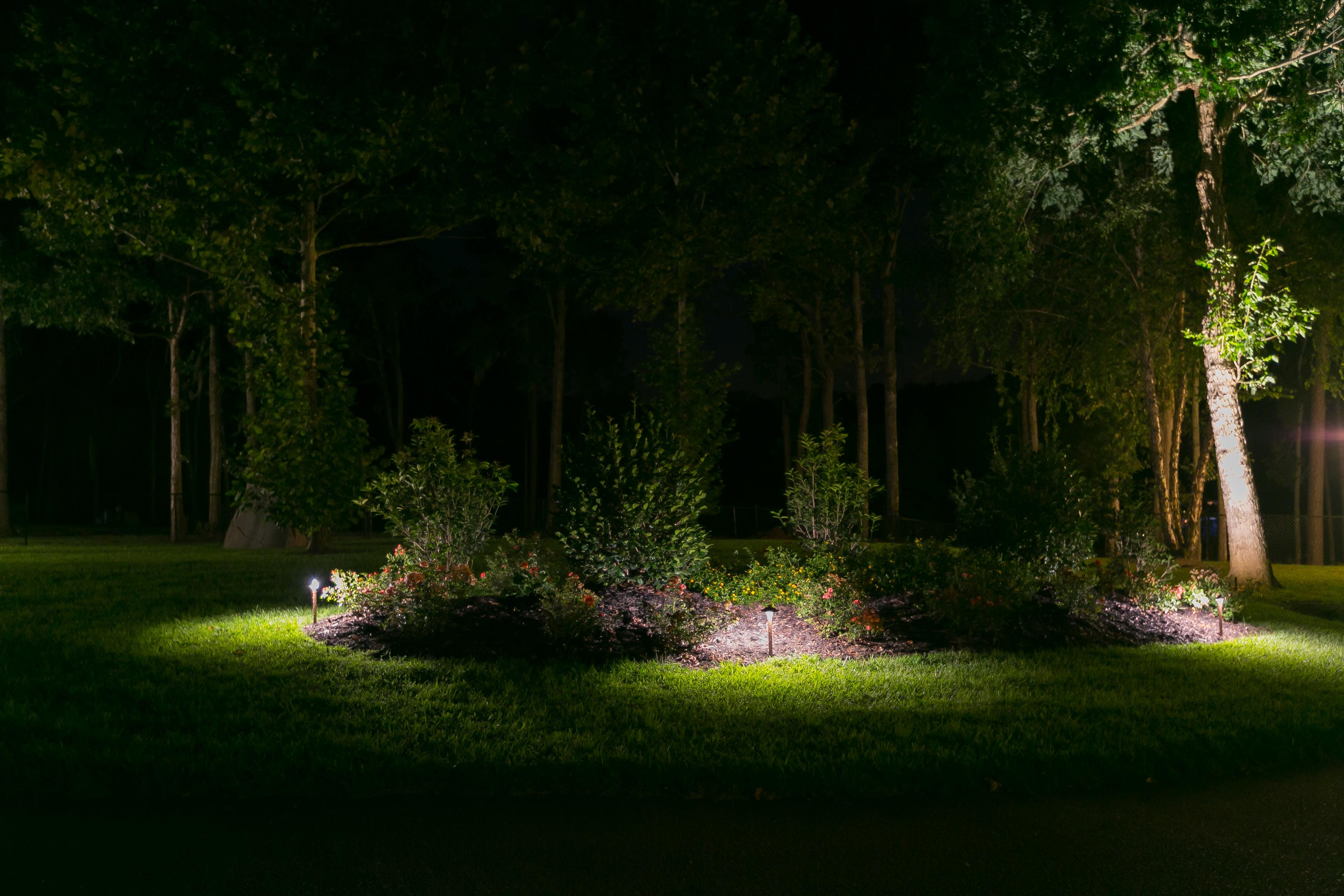 security lighting with backyard landscape lights