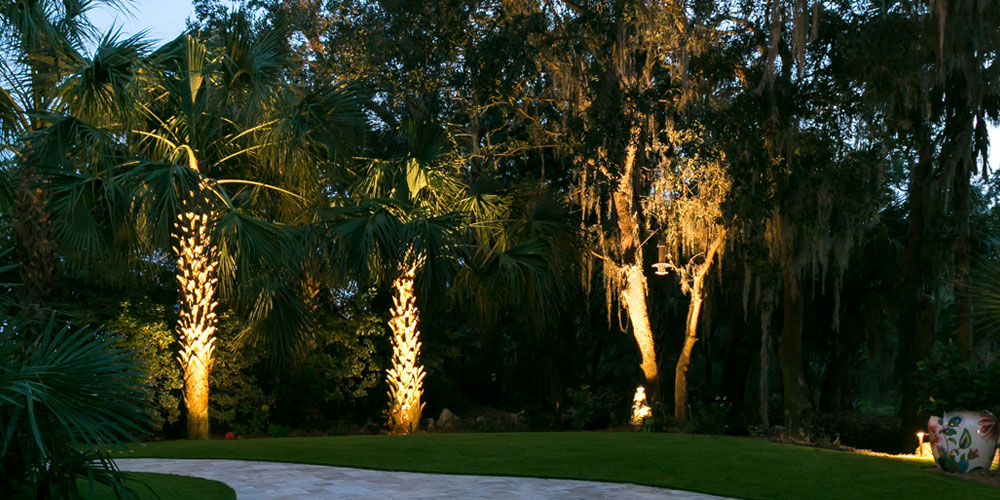 palm tree uplighting Charleston SC