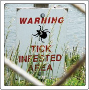 Tick-infested sign