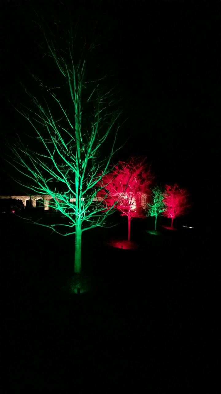 outdoor colored lighting