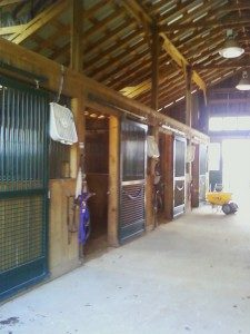 Myrtle-Beach-Mosquito-Misting-is-Perfect-for-Horse-Barns