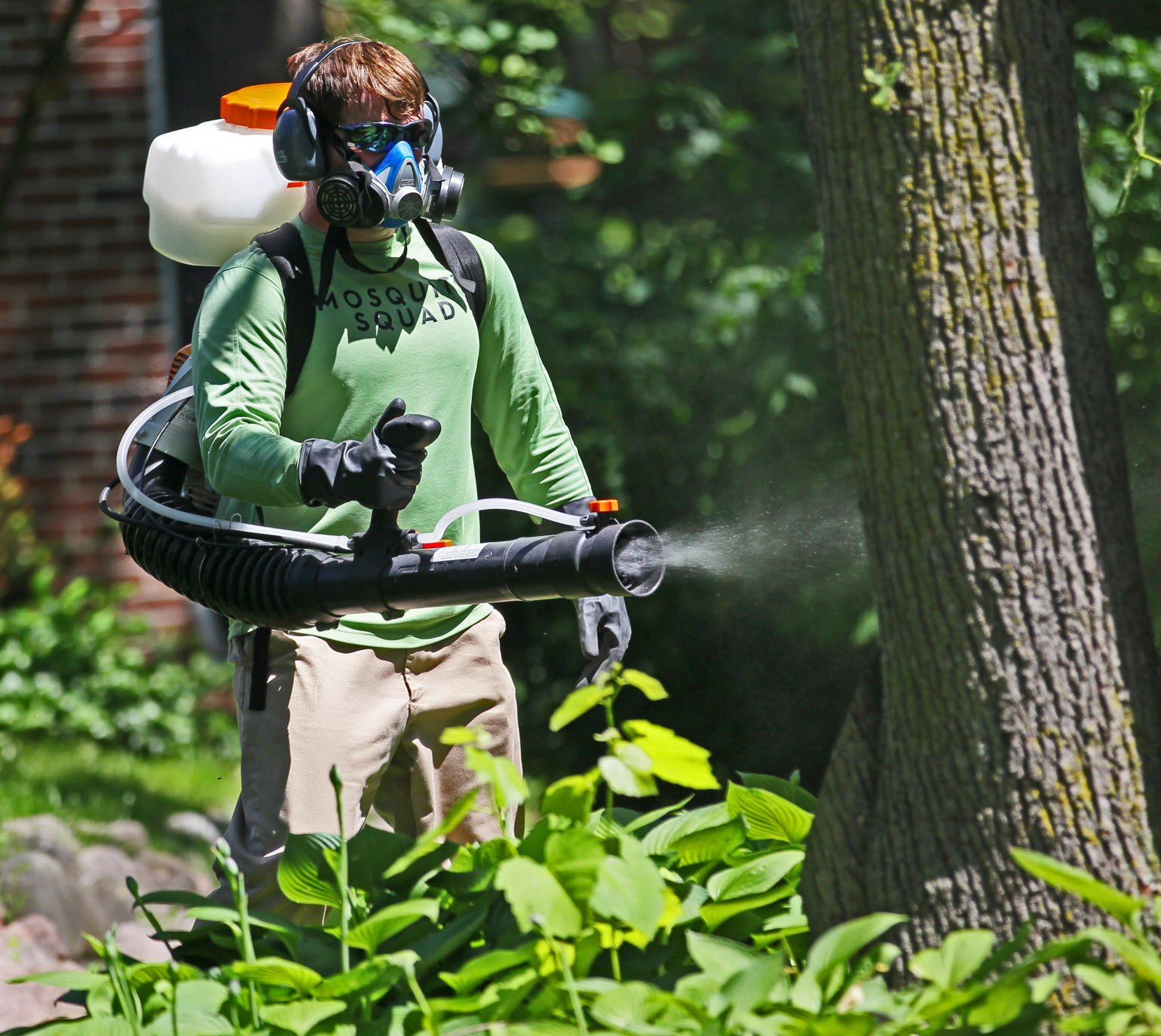Protect Your Family From Mosquitoes In Michigan With Our
