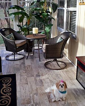 pet-friendly porch