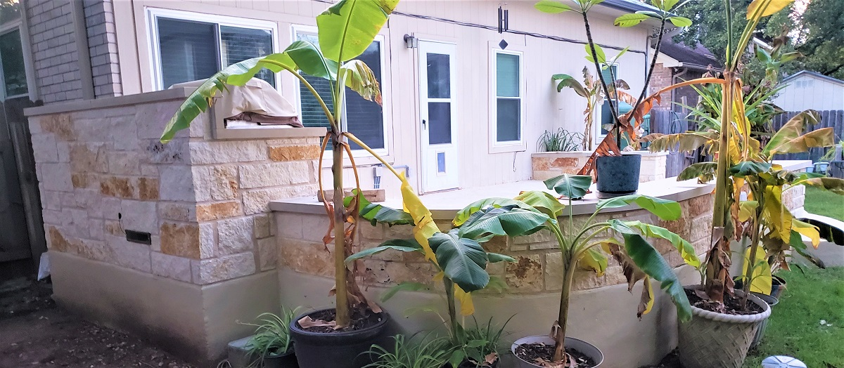 New-patio-offers-plenty-of-space-for-plants