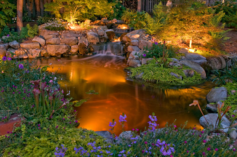 Koi pond lighting ideas Fish Pond At Outdoor Lighting Perspectives Of Wilmington We Start By Lighting Within The Pond To Highlight The Fish Movement As With Every Outdoor Lighting Fixture Outdoor Lighting Perspectives Of Wilmington Underwater Pond Lighting Doubles The Time To Enjoy Your Koi Fish