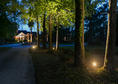 landscape lighting installer Charleston SC