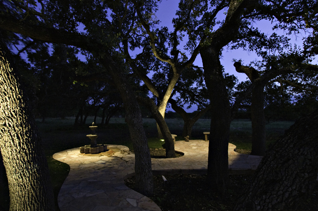Patio lighting highlights surrounding trees