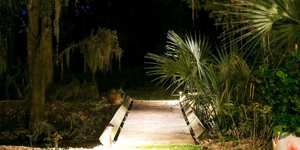 palm tree lighting company Charleston SC