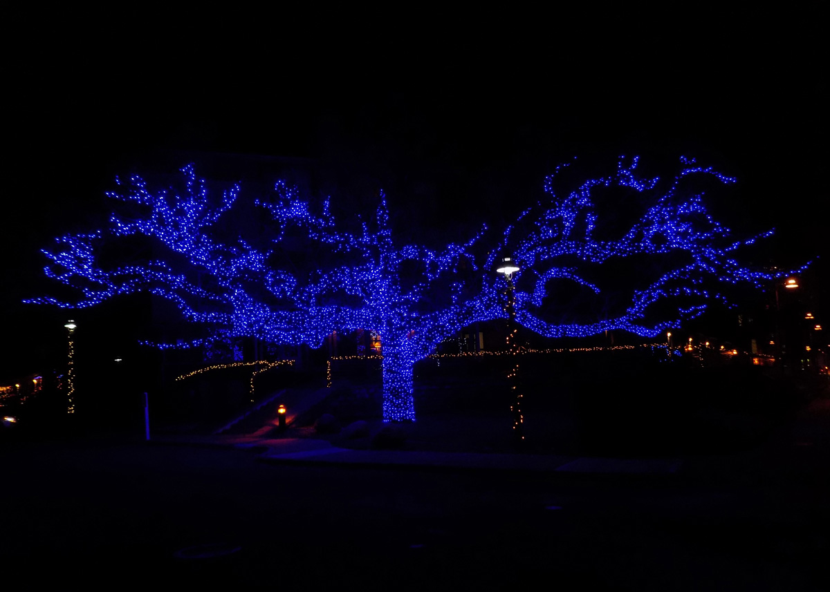 Professional minneapolis holiday lighting could your business dont take on yet another task yourself let the professionals at outdoor lighting perspectives of minneapolis at the holiday spirit to your business with solutioingenieria Images