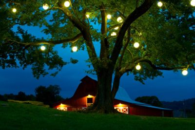 Big Outdoor Lights Minneapolis wedding lighting minneapolis special event lighting allows you to dream big when you choose to rent your lights from outdoor lighting perspectives of minneapolis workwithnaturefo