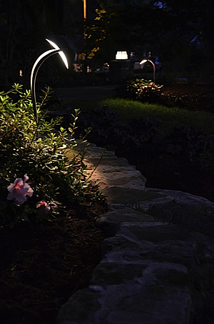 Charlotte landscape lighting