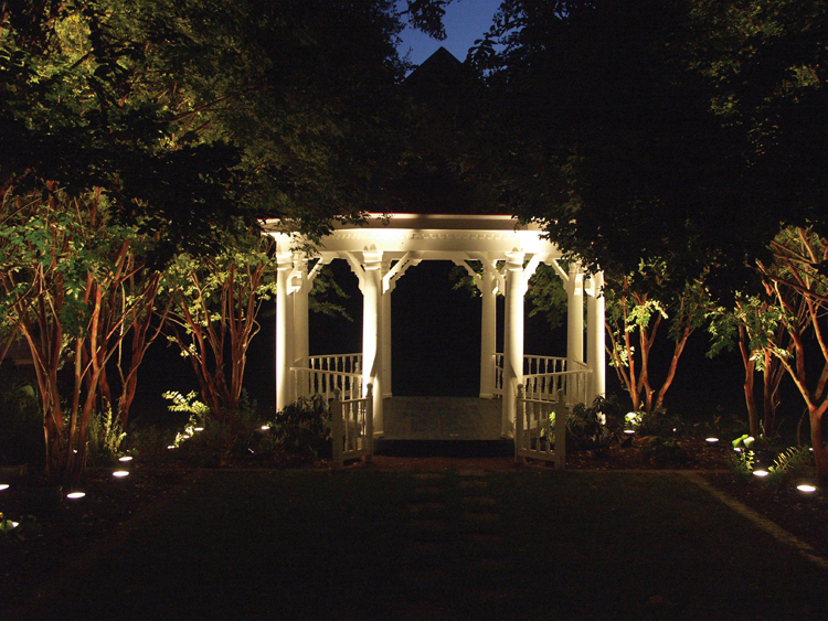 Unique Landscape Lighting in DC