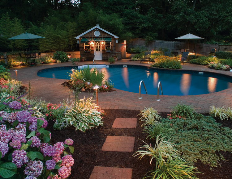 Elegant Pool Lighting by OLP DC Metro