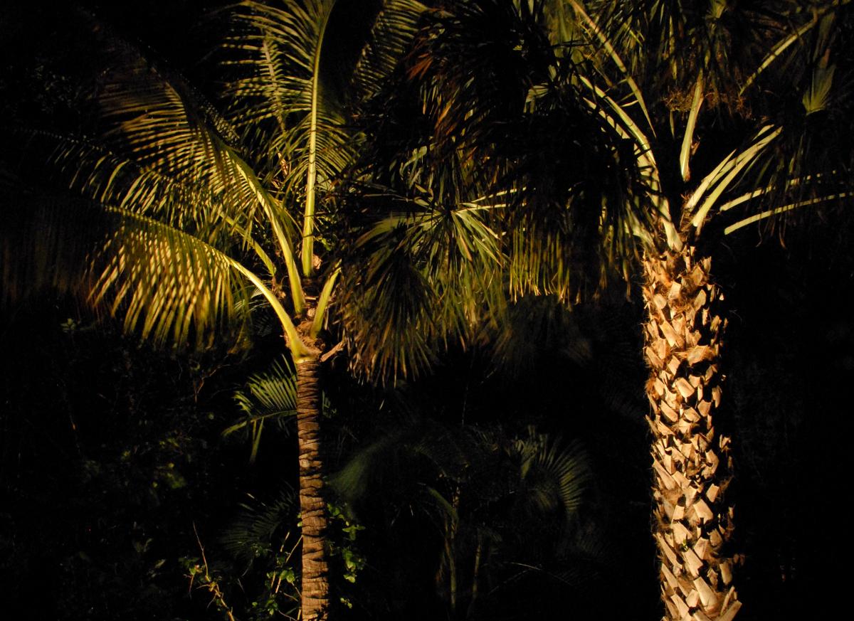 landscape lighting ft myers