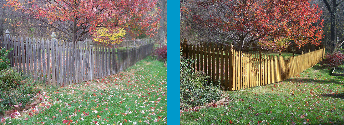 Fence staining and cleaning