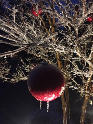 christmas tree lighting for outdoors