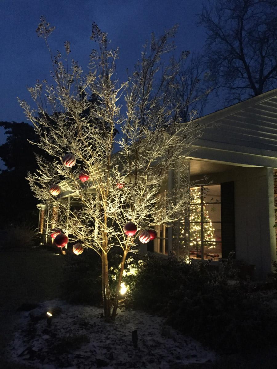 wilmington holiday outdoor lighting