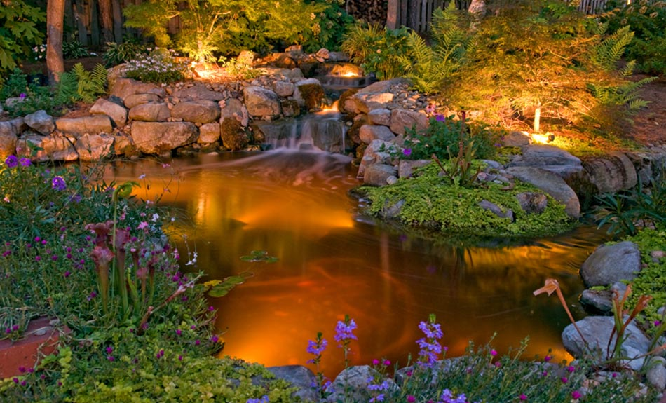 landscape lighting design Columbia SC