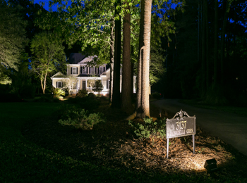 professionally designed landscape lighting Charleston SC