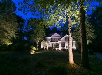 landscape lighting in Charleston South Carolina