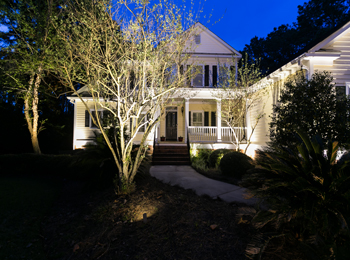 beautiful landscape lighting Charleston SC