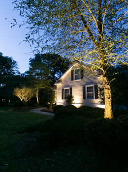 uplighting for home Charleston SC